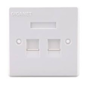 Giganet Double faceplate